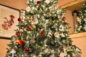 Christmas - stocksnap